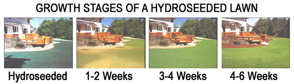 Hydroseeding-time-new